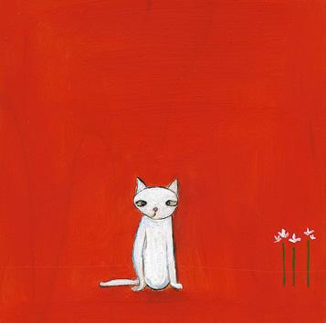 little cross-eyed cat .jpg