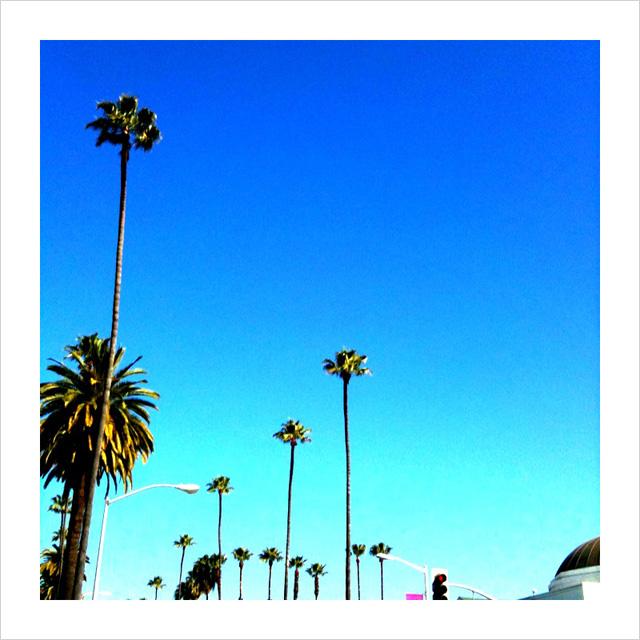 Sunny L.A.