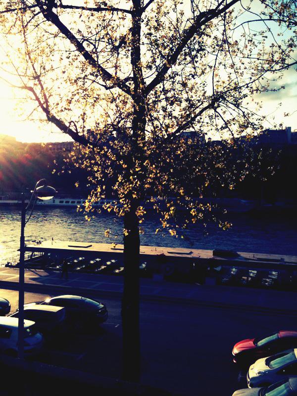 the Creative Thursday blog: Eiffel Tower, I love you