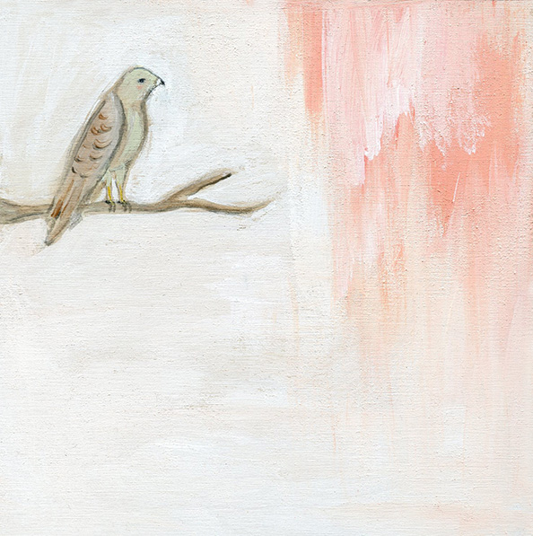 Spirit animal the hawk