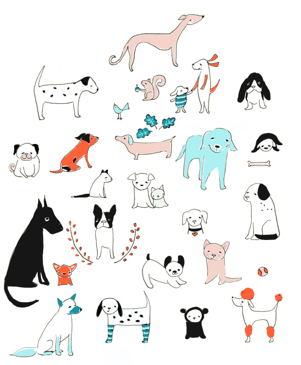 I heart dogs aqua & orange