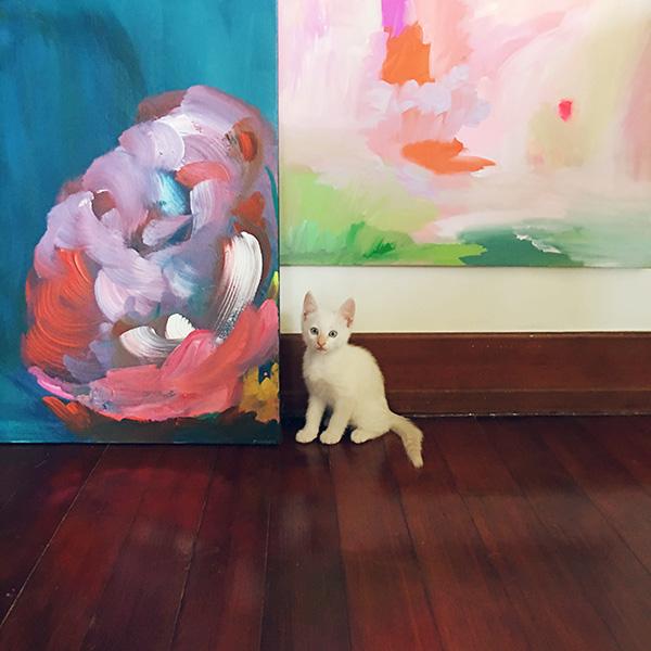 Kitten appreciates abstract art IMG_5532